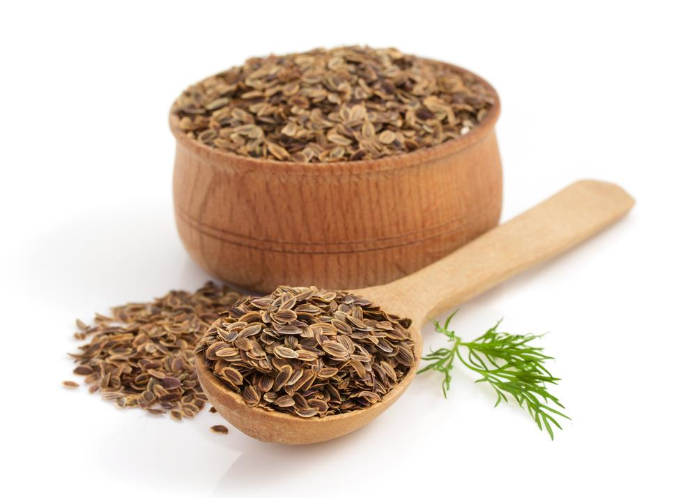 Dill Seed Essential Oil from Ahimsa Oils