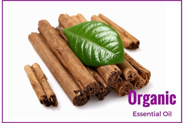Organic Cinnamon Bark Essential Oil