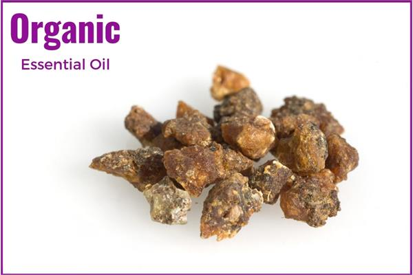Organic Myrrh Essential Oil