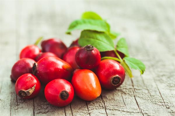 Organic Rosehip Red Seed Oil